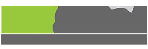 PaySpace Logo